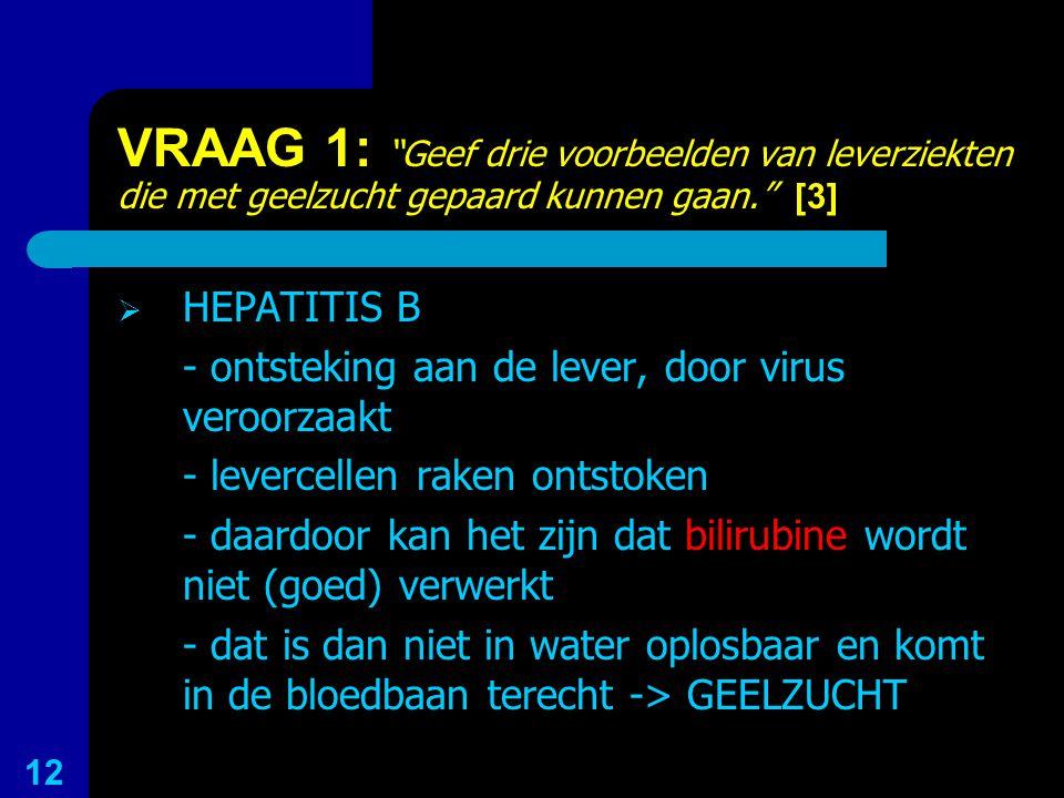 VRAAG 1: Geef drie voorbeelden van leverziekten die met geelzucht gepaard kunnen gaan. [3]
